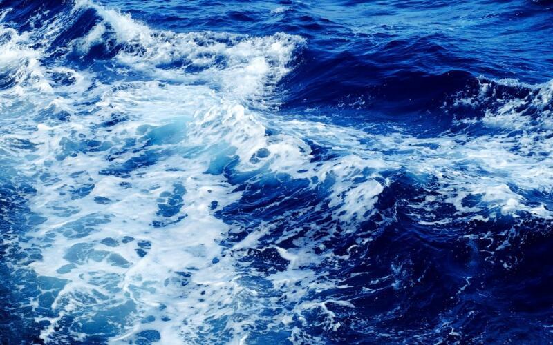 除了禁塑 我国海洋污染治理还做了更多